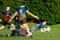 A battle weary Belfast High School player looks to offload to a team mate during their Danske Bank Schools Cup defeat to Rainey Endowed School at Magherafelt