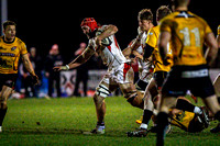 Peter Browne charges forward for Ulster against Cornish Pirates in the British & Irish Cup.